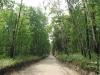 the-road-to-yuzhnouralsk-reservoir