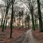 —Netherlands— Zonsondergang op Veluwezoom